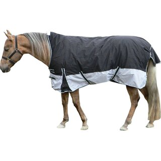 Winter Turnout Horse Rug By Top Score